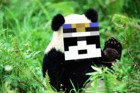 PandaPoliceMan